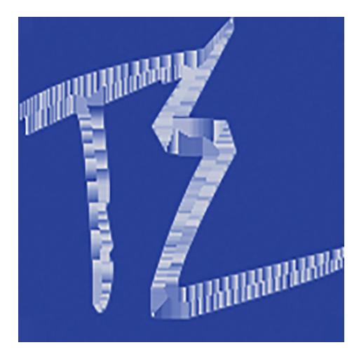 TylerEnslin.com Logo